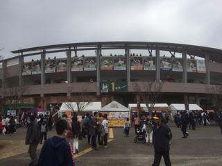 ホークスキャンプ(2017−2).jpg
